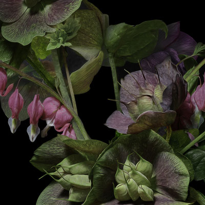"T.M. Glass, ""Hellebores and Bleeding Hearts,"" 2020, archival pigment print on hand-made Italian rag paper, 18 x 18"" (also available in: 30 x 30"", 42 x 42"", 52 x 52""; 58 x 58"",) contact for price"