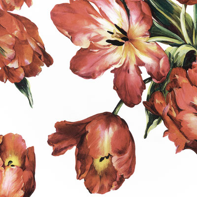 """Joshua Jensen-Nagle, """"Dolce and Gabbana's Tulips,"""" archival inkjet print face-mounted to Plexiglass, 34 x 34"""" (also available: 23 x 23; 43 x 43; 58 x 58)"""