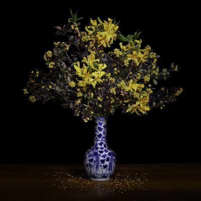 """T.M. Glass, """"Yellow Azaleas and Barberry in a Blue and White Chinese Vase,"""" 2020, Archival Pigment Print, Available in: 30 x 30""""; 42 x 42""""; 52 x 52""""; 58 x 58"""", contact for price"""