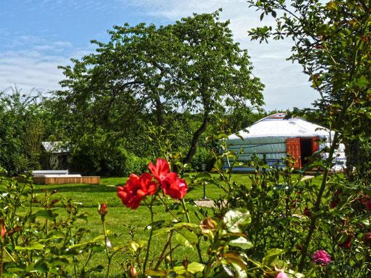 Jardin privatif pour les yourtes
