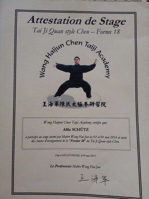 Teilnahmezertifikat 18er Form mit Wang Haijun