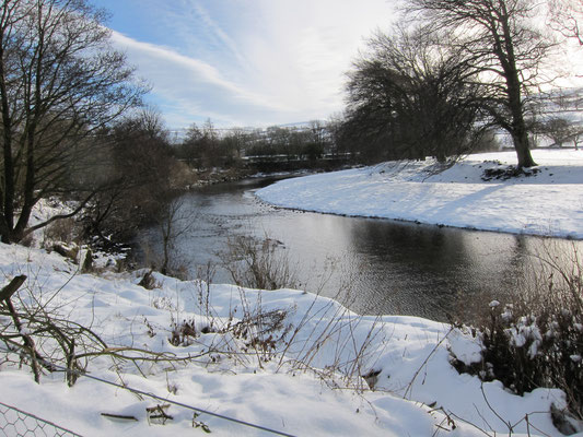 River bank in it;s winter garb