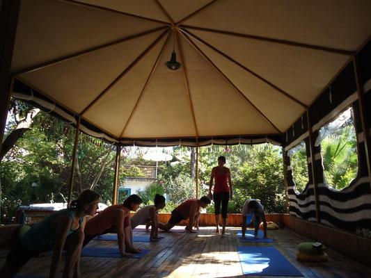 am Morgen Yoga