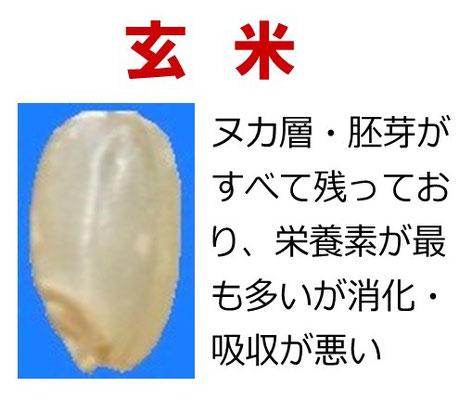 玄米の説明