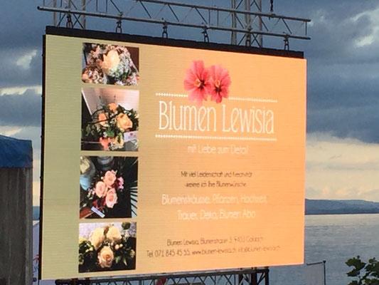Blumen Lewisia, Event-Partner 2017