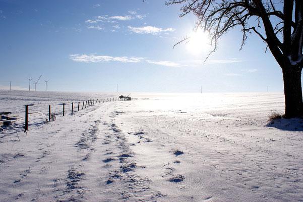 Winterzauber im Hunsrück, Foto Copyright by ChristinaPörschFotografie