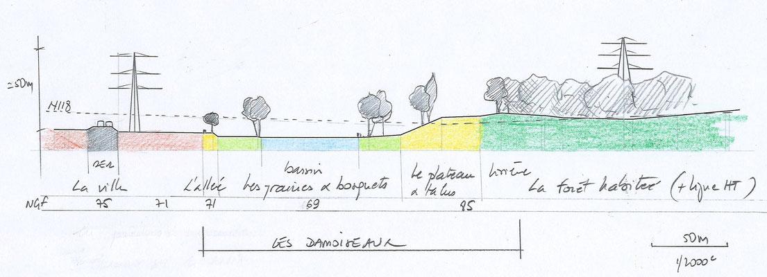 vallée de la Bièvre, site des Damoiseaux / in-folio paysagistes     coupe nord-sud