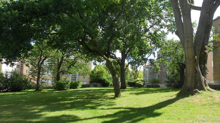 ©in-foliopaysagistes  cité-jardin de la Butte-rouge  Châtenay-Malabry   étude patrimoniale