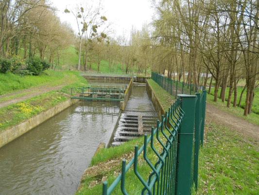 vallée de la Bièvre, site des Damoiseaux / in-folio paysagistes