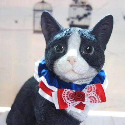 黒いほう:?:福岡→東京:ネコトヒトモデル。動かないから撮影しやすい。成猫より小さい体型。:2016/10/06:掲載商品⇒リトルプリンセス猫リボン