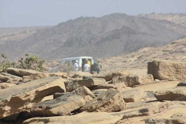 Geführte Wanderungen auf Fuerteventura