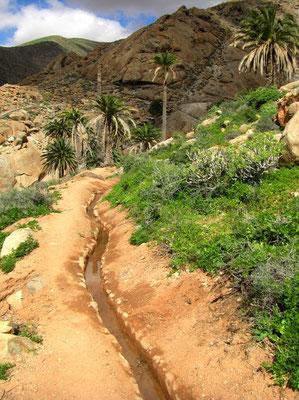 Alte Bewässerungsrinne für landwirtschaftliche Felder Levadas