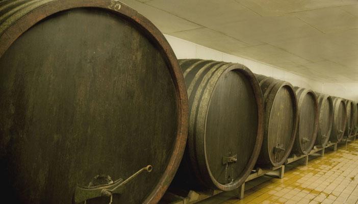 Holzfässer hier werden die Rotweine gelagert