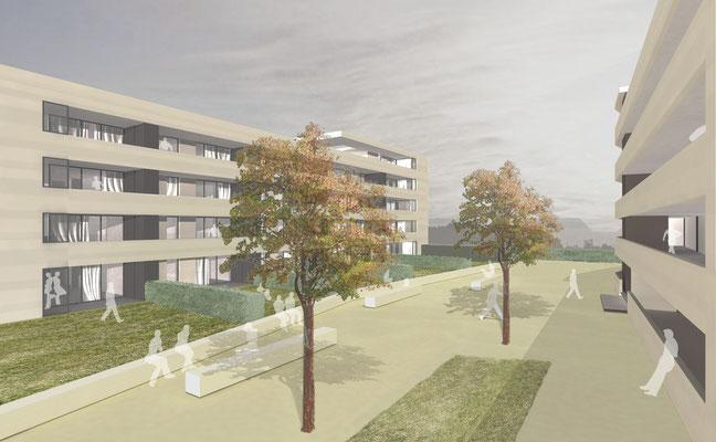 Wettbewerb Wohnhäuser, Grenzach, 1. Preis