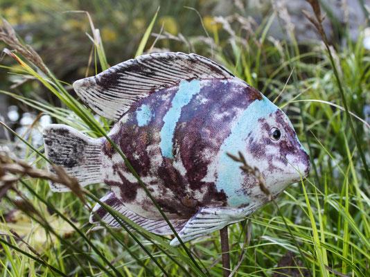 Fisch gestreift
