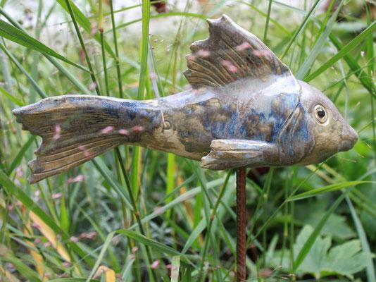 Fisch beim Teichrand
