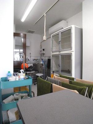 Dogs 伊川谷 トリミング室