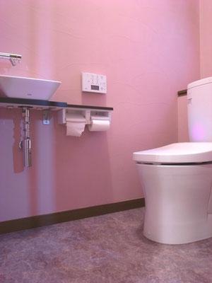 戸建 リノベーション トイレにもカルクウォール