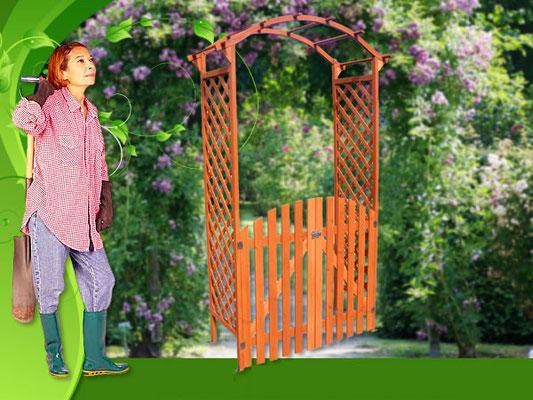 arco +grigliato +rampicanti +cancello +giardino +rose +esterno