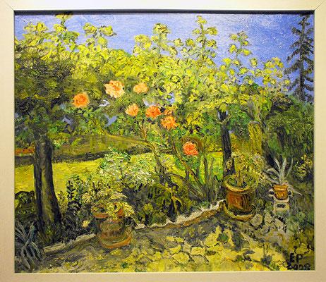 Rosen in meinem Garten 2009
