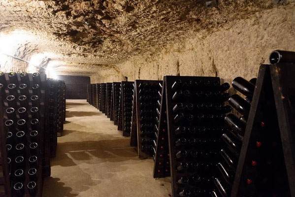 visit-winery-cellar-Loire-wine-tours-Loire-Valley-Amboise-Vouvray-Myriam Fouasse-Robert