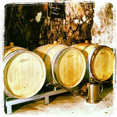 visit-wine-cellar-wine-tour-loire-valley-wine-tasting-Amboise-Vouvray-Tours