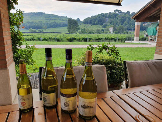 wine-tourisme-Italy-Soave-wine-tasting