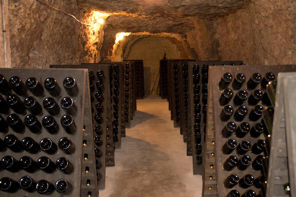 vignoble-Alain-Robert-visit-winery-vineyard-cellar-Chancay-Vouvray-Loire-Valley-Amboise-Tours-guided-wine-tours-and-wine-tastings-Myriam-Fouasse-Robert