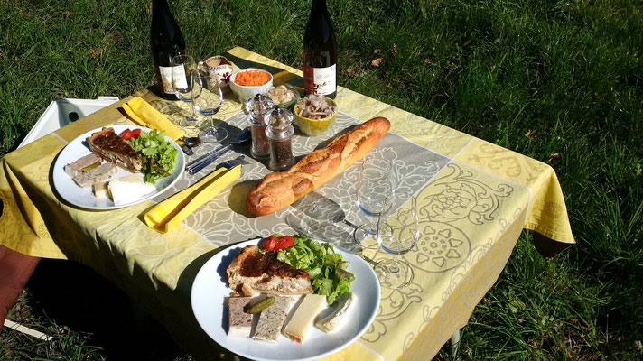 Picnic in the vines of Vouvray