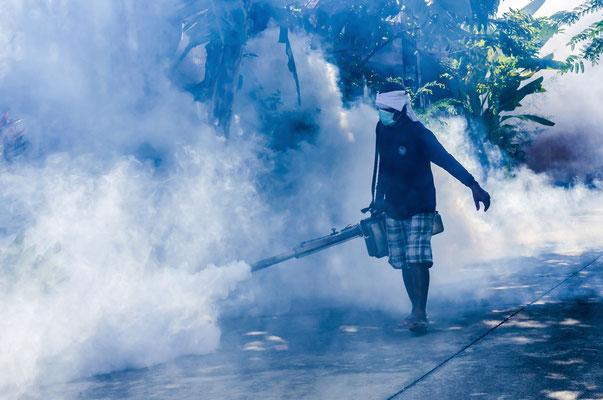 In tropischen Ländern wird in Städten und Hotels regelmäßig ein für Menschen ungiftige Insektenvertilgungsmittel versprüht.