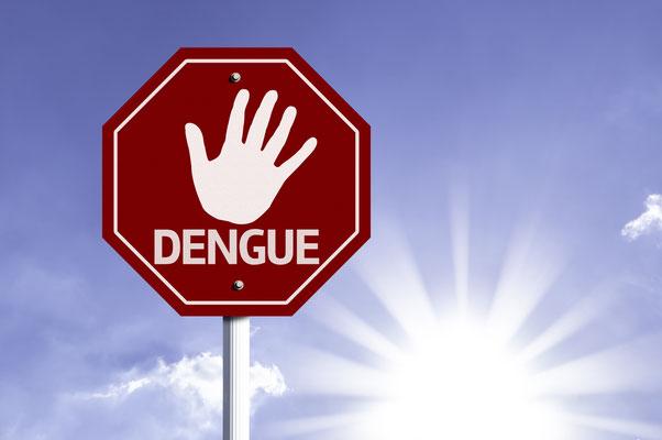 Mit den richtigen Schutzmaßnahmen kann das Dengue-Fieber Risiko in Vietnam stark gesenkt werden.