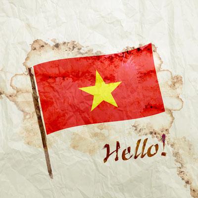Bitte beachten Sie die verschiedenen Regeln für Vietnam Visas.