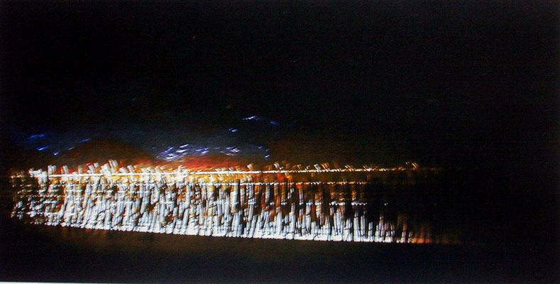 Tass Wolf - Feld - 2004 - Öl auf Holz, Papier, Fäden, Beleuchtung - 80 x 160 cm