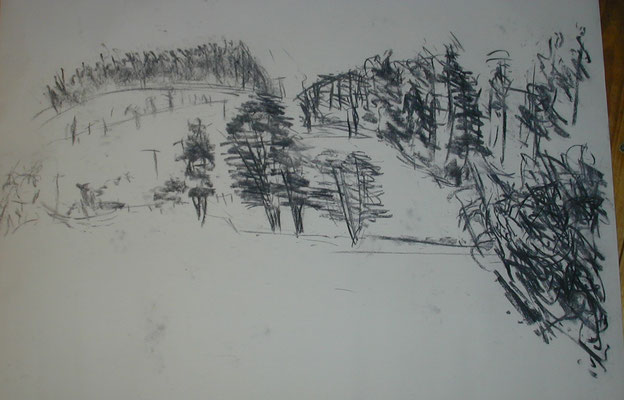Skizze Feld 2003