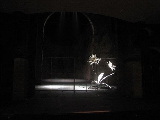 Festspiele Bad Hersfeld 2007