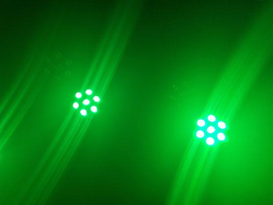 Grünes Licht, Thomas Bodmer