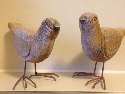 ELB-NEST Vögel