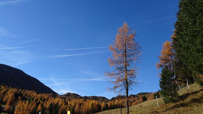 ein traumhaft schöner Herbsttag