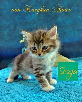 Sezja Sarita = kleine Prinzessin
