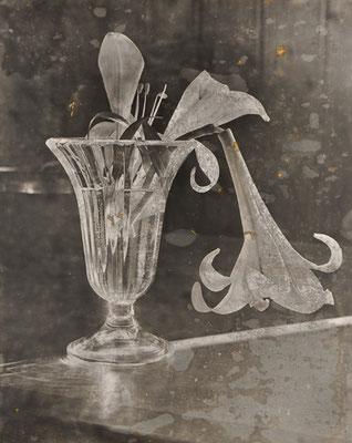 Kleiner Glas mit Lilie Handabzug auf Silber-Gelatine-Barytkarton vom Originalnegativ – labortechnisch verfremdet; unikate Variante (Finegrafie) 50x40 cm, montiert auf 70x50 cm Museums-Karton 495,- EUR