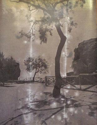 Landschaft bei Agrigento Handabzug auf Silber-Gelatine-Barytkarton vom Originalnegativ – labortechnisch verfremdet; unikate Variante (Finegrafie) 100x80 cm 1.200,- EUR (ohne Rahmen) 1.350,- EUR (mit HALBE-Rahmen Alu-natur)