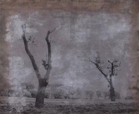 Landstraße im Wind Handabzug auf Silber-Gelatine-Barytkarton vom Originalnegativ – labortechnisch verfremdet; unikate Variante (Finegrafie) 50x60 cm, montiert auf 60x80 cm Museums-Karton 540,- EUR