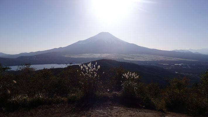 笹薮をくぐり抜けてからの山頂にて、富士山ドーン!