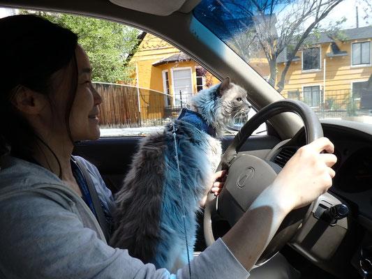 朝ごはんを食べにカフェへ。車でもカフェでもパニクるエル。笑 これから車で大陸横断するの、大丈夫かなぁ・・・