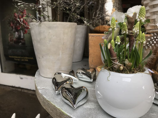 Frühlingserwachen in der Blumenscheune Utphe - www.blumenscheune-utphe.de
