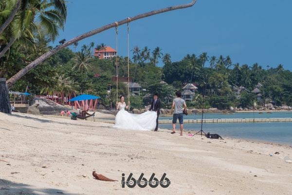Hochzeitsfotograf am Strand von LAMAI