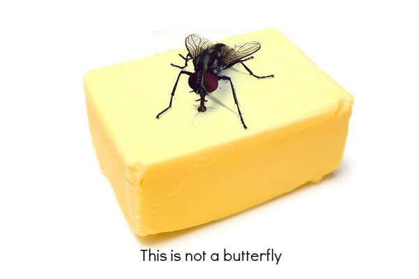 This is not a butterfly