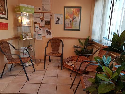 Sowohl die Vitrine als auch das Sofa sind im Wartezimmer der Kleintierpraxis in Heide, Dithmarschen neu dazugekommen
