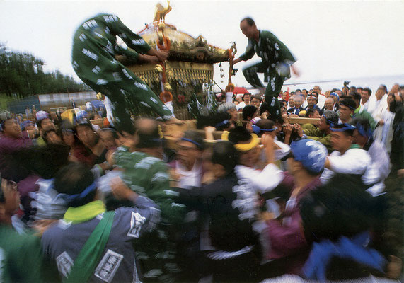 一色海岸で勇ましく揉み合う小坪・須賀神社の御輿