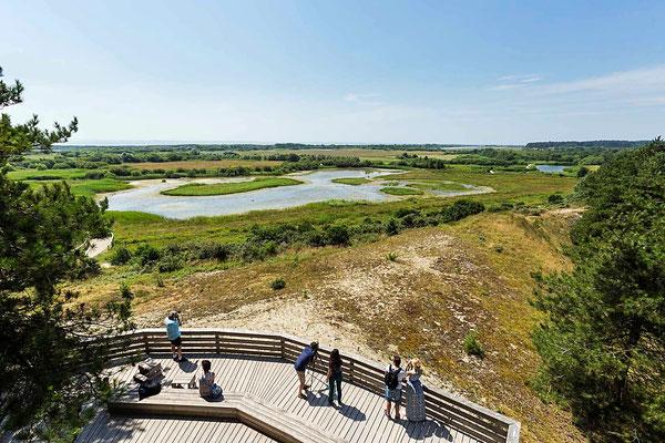 Parc ornithologique du Parc du Marquenterre - Camping Quend-Plage - Baie de Somme - Camping Fort-Mahon - Picardie - locations Mobil-Home - location insolite - Camping Clos des Genêts